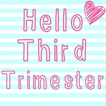 third trimester |, Human Body